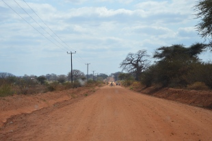 On the road to a village in the Dodoma region